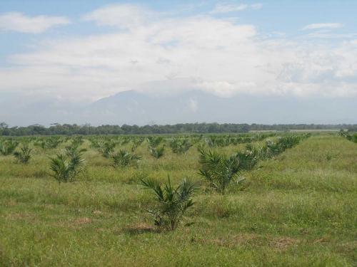 mapeoColombia2.jpg